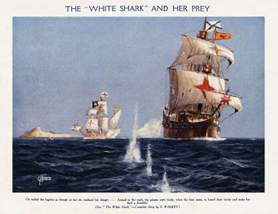 The 'White Shark' And Her Prey