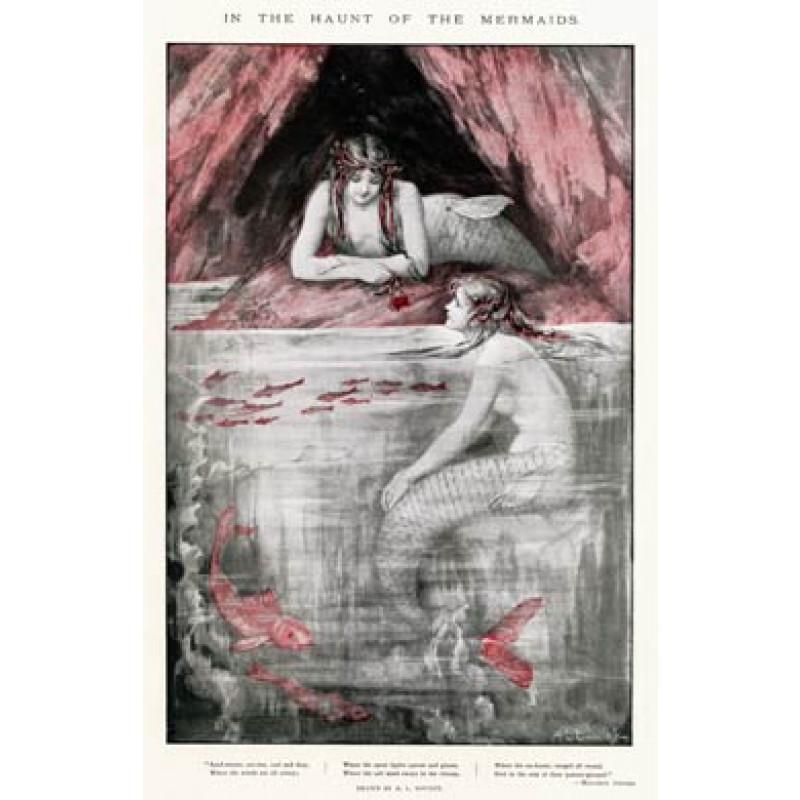The Haunt Of The Mermaids