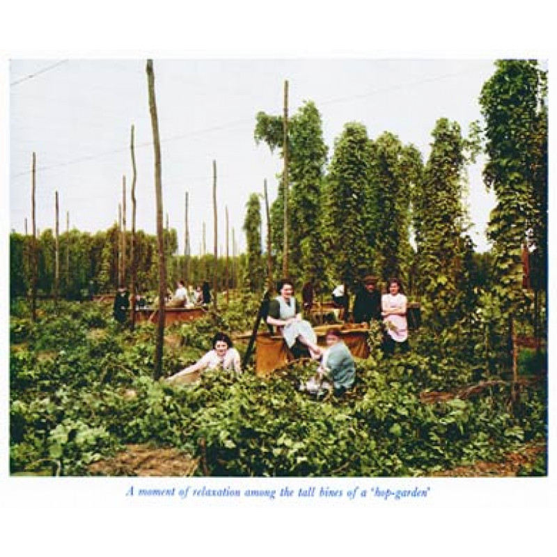 Hop Pickers at Rest