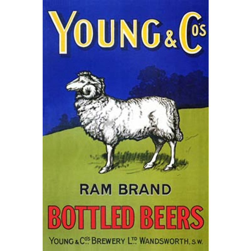 Young & Co Brewery, 1905