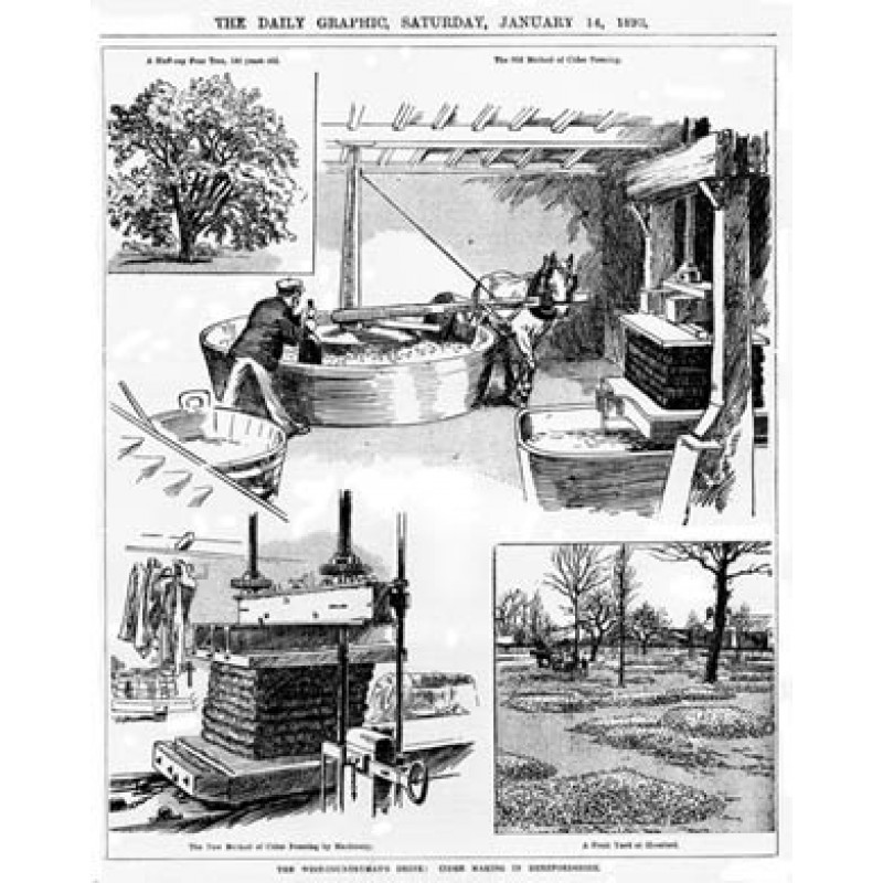 Cider Making in Hereford