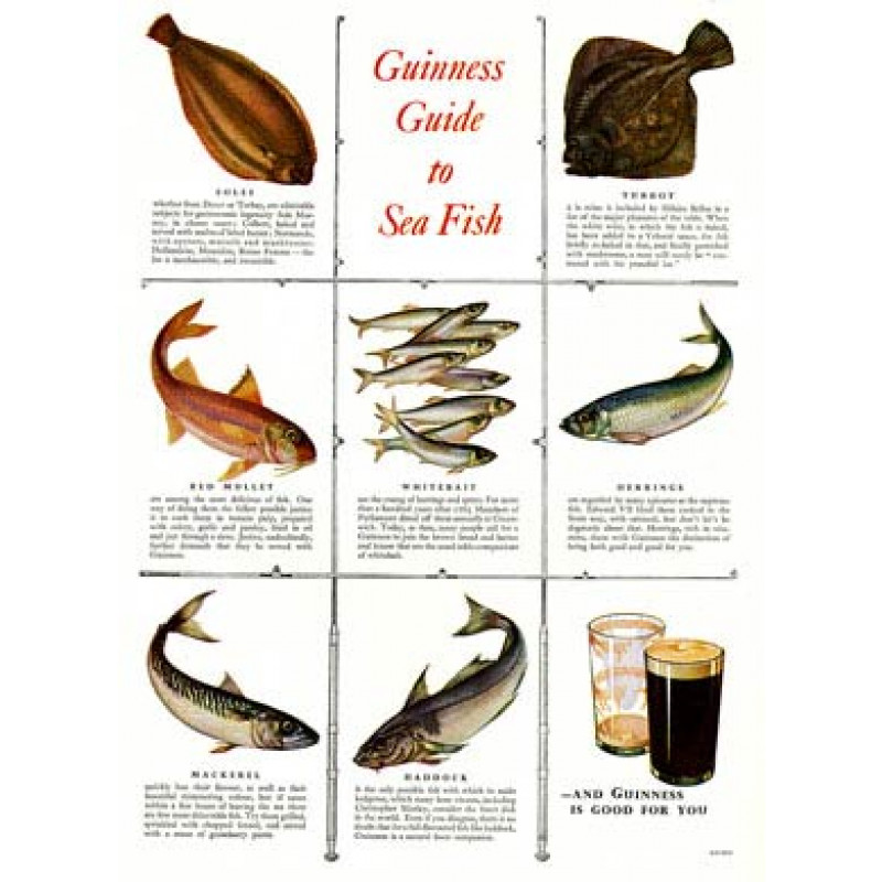 Guinness, Sea Fish