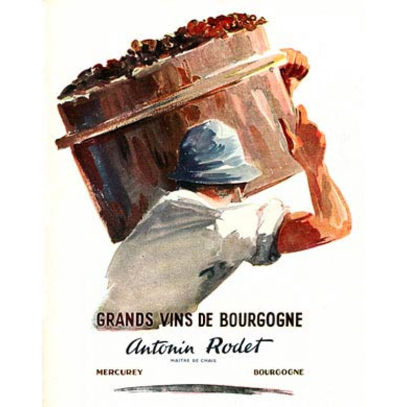 Antonin Rodet, Vins de Burgogne