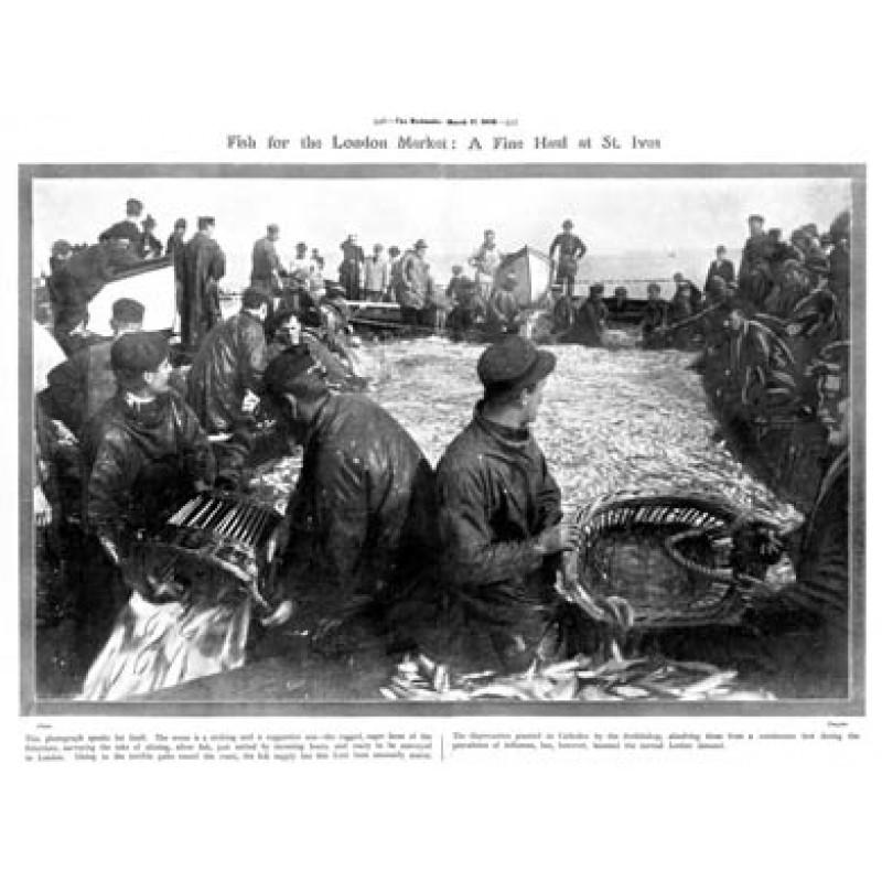Pilchard Haul, St Ives, 1908