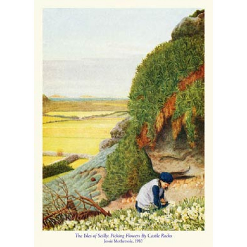 Scilly, Picking Flowers By Castle Rocks