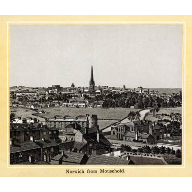 Norwich, from Mousehold