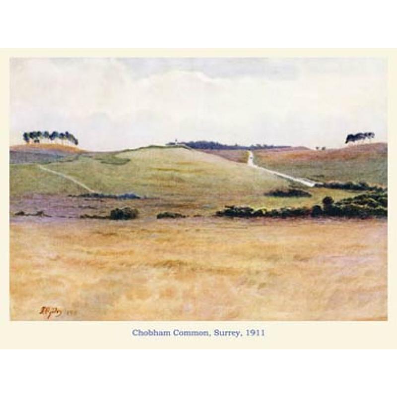 Chobham Common, 1911
