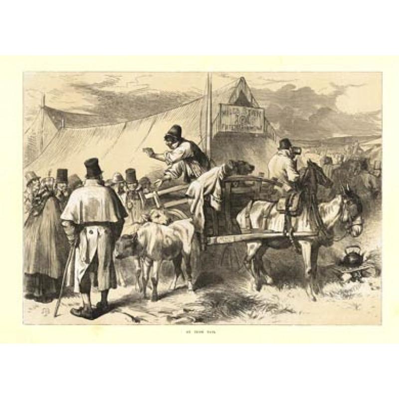 Irish Fair, 1872