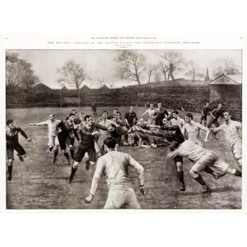 England v New Zealand, 1905